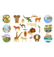 african safari banners vector image vector image