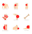 anatomical knowledge icons set cartoon style vector image vector image