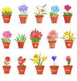 romantic collection of cute flowerpots with vector image vector image