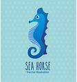 sea animal design vector image vector image