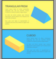 triangular prism and cuboid geometric collection vector image