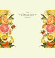 Vintage citrus banner vector image vector image
