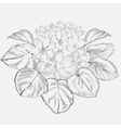 Vintage elegant flowers Black and white vector image