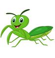 Cartoon praying mantis