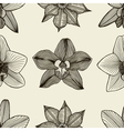 Doodle flowers seamless pattern vector image