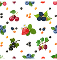 Fresh Berries Seamless Colorful Pattern vector image vector image
