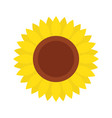 sunflower icon isolated on white background vector image vector image