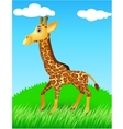 giraffe in the wild vector image vector image