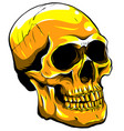 gold human skull on white background vector image vector image
