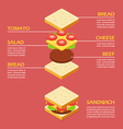 Isometric of Sandwich ingredients infographic vector image vector image