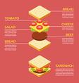 isometric sandwich ingredients infographic vector image vector image