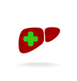 Liver with a medical cross logo Green and red vector image vector image