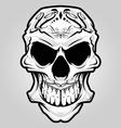 mexico skull vector image vector image