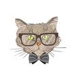 Portrait of hipster cat vector image vector image