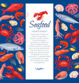 seafood layout design vector image