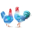 Blue Rooster and chicken female symbol 2017 by vector image vector image