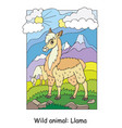 children colorful llama for coloring vector image