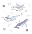doodle whales and planets vector image