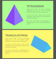 tetrahedron and triangular prism colorful banner vector image