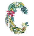 Tropical floral summer pattern hand drawn vector image