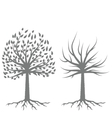 Two Trees Silhouettes vector image