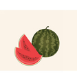 Watermelon with slices isolated vector image