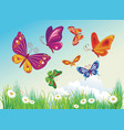 butterfly on a background of blue sky vector image vector image