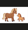 cute horse with foal on a white background vector image vector image
