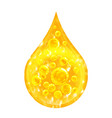 drop oil inside with oxygen bubbles macro vector image