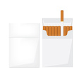 Opened and closed cigarette pack vector image