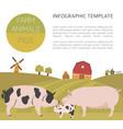 pig farming infographic template hog sow pig vector image