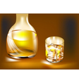 whisky bottle and glass vector image vector image