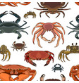 crabs set pattern vector image