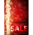 Black friday red background vector image