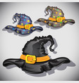 cartoon witch hats vector image vector image