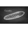chalk sketch of cucumber vector image vector image