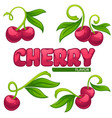 collection juice stickers and cherry berry vector image vector image