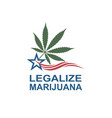 marijuana leaf on usa flag vector image vector image