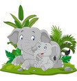 cartoon mother and baelephant in grass vector image vector image