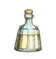 color decorative crystal carafe tequila drink vector image vector image