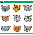 funny cats heads set cartoon vector image