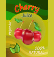 a packing of juice of red c vector image vector image