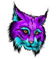 eurasian lynx isolated vector image vector image