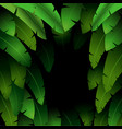 Exotic pattern with tropical leaves banana on a bl vector image