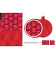 food patterns fruit pomegranate vector image