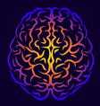 human brain view from above vector image vector image