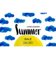 summer big discount special offer for the summer vector image vector image