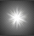 white sparkling star vector image