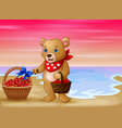 a bear with a basket red heart on seaside vector image vector image