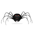 black cartoon scary spider isolated vector image vector image